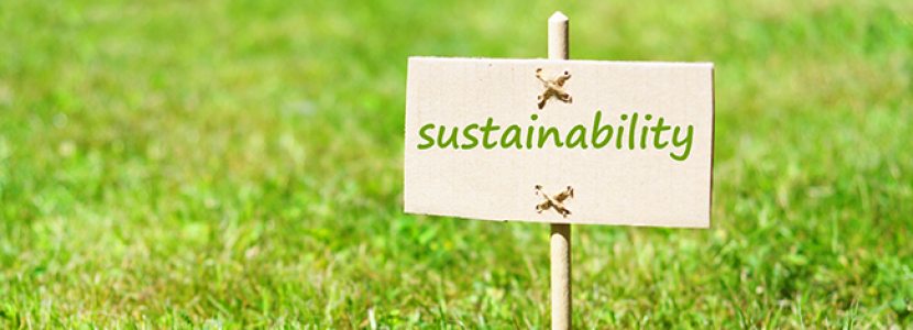 Google Searches for the Path to Total Sustainability